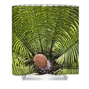 Close-up Palm Leaves Shower Curtain