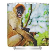 Close-up Portrait Of A Nicaraguan Spider Monkey Sitting And Looking At The Camera Shower Curtain