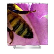 Close View Of Single Honey Bee Shower Curtain