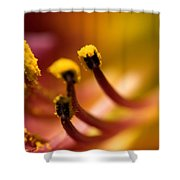 Close View Of The Stamen Of A Flower Shower Curtain