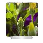 Close View Of Two Yellow Symphony Shower Curtain