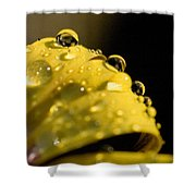 Close View Of Water Droplets Shower Curtain