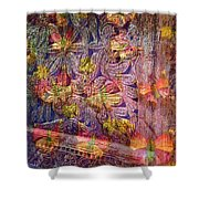 Closed Butterfly Door Shower Curtain