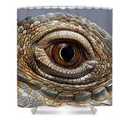 Closeup Eye Of Green Iguana Shower Curtain by Sergey Taran