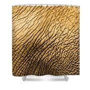 Closeup Of An African Elephant Shower Curtain