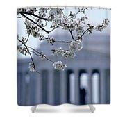Closeup Of Cherry Blossoms Shower Curtain