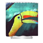 Closeup Portrait Of A Colorful And Exotic Toucan Bird Against Blue Background Nicaragua Shower Curtain