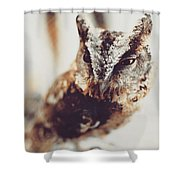 Closeup Portrait Of A Young Owl Looking At The Camera Shower Curtain