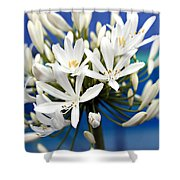 Closeup White Californian Flower Shower Curtain
