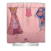 Clothes Line Mural Burlington Vermont Shower Curtain