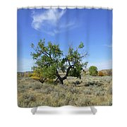 Cloud And Cottonwood Shower Curtain by Cris Fulton