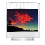 Cloud And Tree Shower Curtain