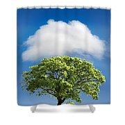 Cloud Cover Shower Curtain