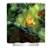 Cloud Flowers Shower Curtain