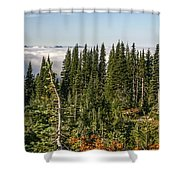 Cloud Layer Shower Curtain