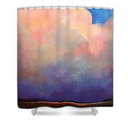 Cloud Light Shower Curtain by Toni Grote