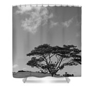 Cloud Shadow Shower Curtain