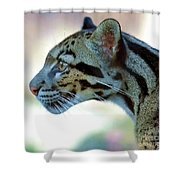 Clouded Leopard Shower Curtain