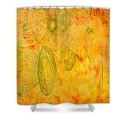 Clouds And Crystals Abstract #2 Shower Curtain