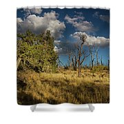 Clouds Over Mesa Verde Shower Curtain
