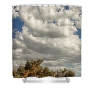 Clouds Rising Palm Springs Shower Curtain