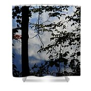 Clouds Tree Water Shower Curtain