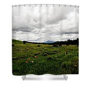 Cloudy Meadow Shower Curtain