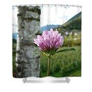 Clover 2 Shower Curtain