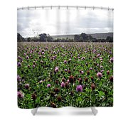 Clover Field Wiltshire England Shower Curtain