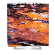 Clownfish Shower Curtain