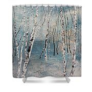 Cluster Of Birches Shower Curtain