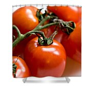 Cluster Of Tomatoes Shower Curtain