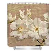 Cluster Of White Roses Posterized Shower Curtain