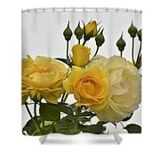 Cluster Of Yellow Roses Shower Curtain
