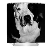 Clyde Shower Curtain