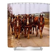 Clydesdale Amish Plow Team Shower Curtain