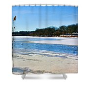 Coachlace Shower Curtain
