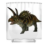Coahuilaceratops Profile Shower Curtain