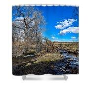 Coal Creek Shower Curtain