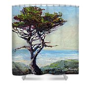 Coast Cypress Shower Curtain