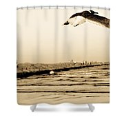 Coastal Bird In Flight Shower Curtain