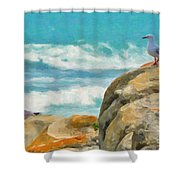 Coastal Rocks Shower Curtain