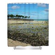 Coastal Textures Shower Curtain