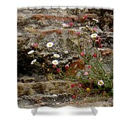 Coastal Wildflowers 1 Shower Curtain
