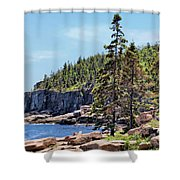 Coastline And Otter Cliff 4 Shower Curtain
