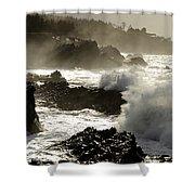 Coastline Oregon Shower Curtain