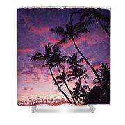 Coastline Palms Shower Curtain
