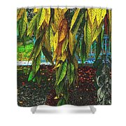 Coat Of Many Colors Shower Curtain
