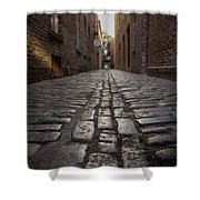 Cobbled Alley Shower Curtain