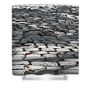 Cobbled Shower Curtain